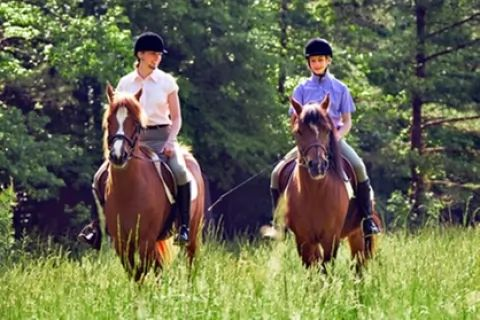 Private Horse Riding Lesson With a One-Hour Trek at MatchMoor